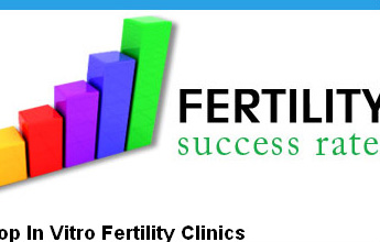 Fertility Success Rates